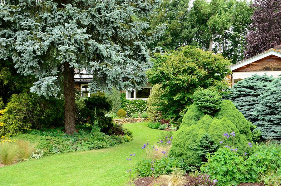 Adrian Blooms villa ligger väl inbäddad. Foto: K Engstrand