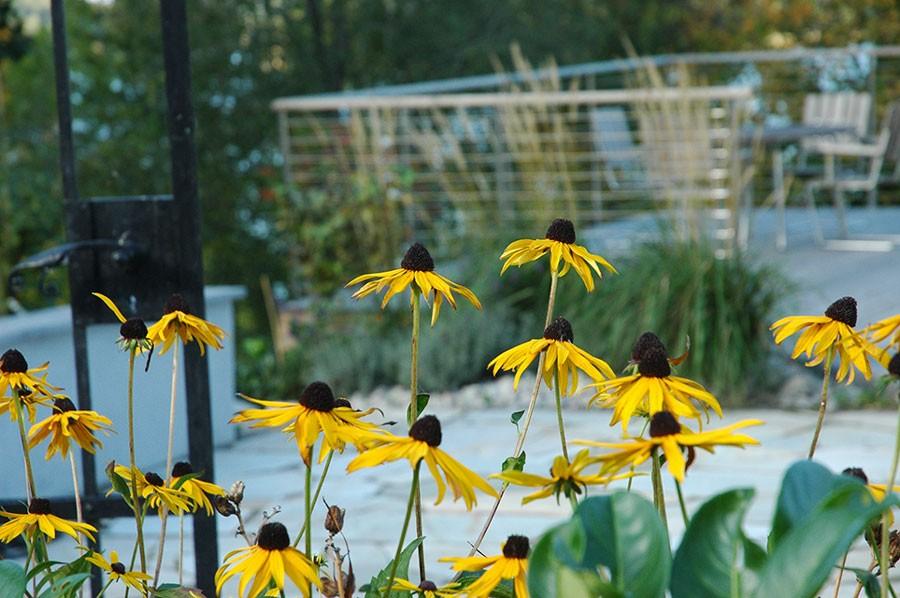 Foto Garden by Anna/Anna Skjönsberg