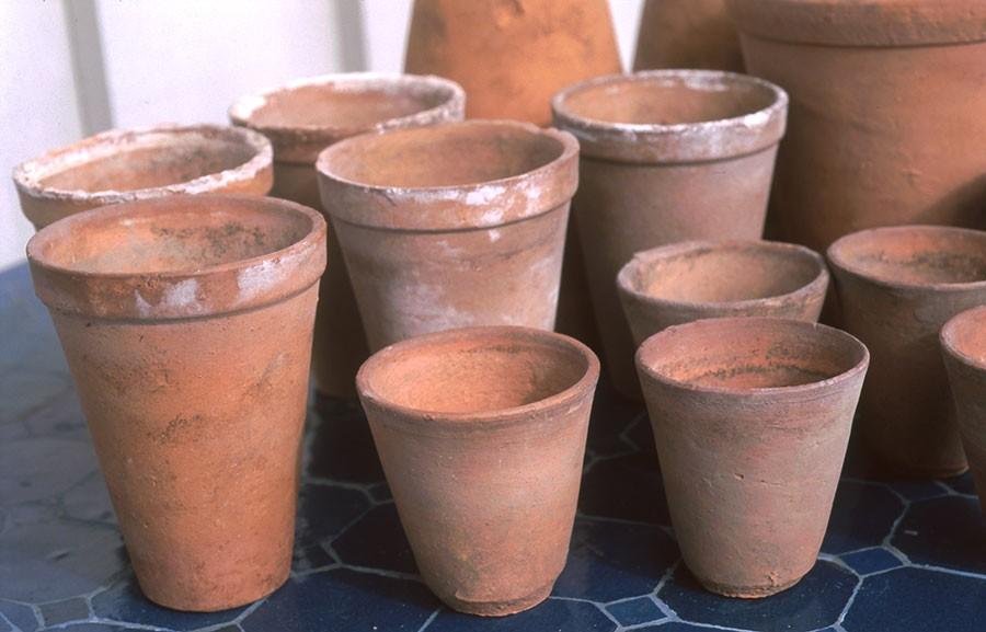 Och han skapade specialgjorda lerkrukor som gjorda för att få sticklingar av klematis att trivas. Foto: Kerstin Engstrand