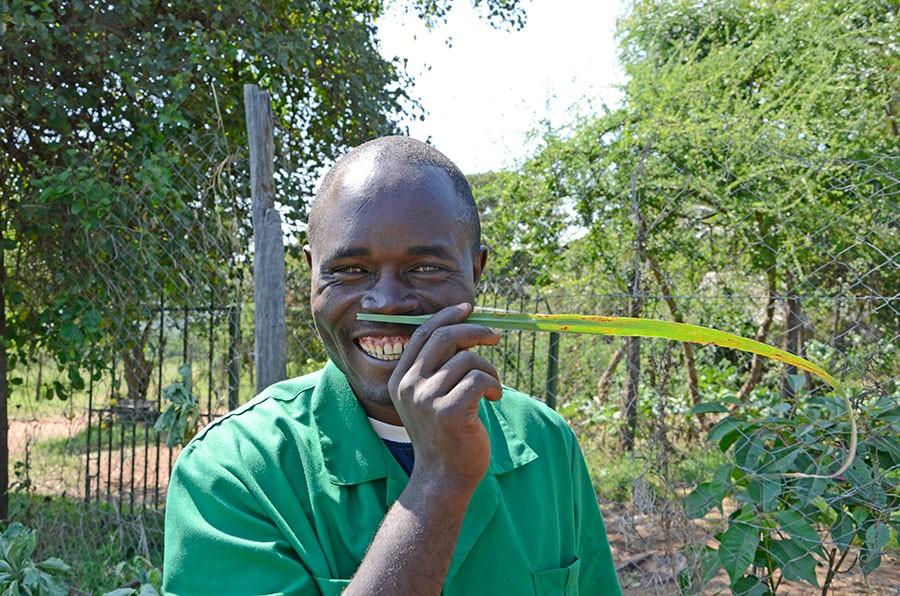 Och stoltas är Georg över citrongräset! Foto: K Engstrand