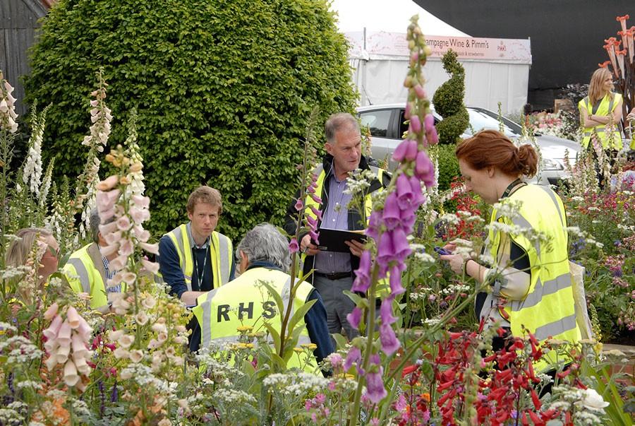 RHS har genomgång av trädgården sista anläggningsdagen. Foto: Kerstin Engstrand