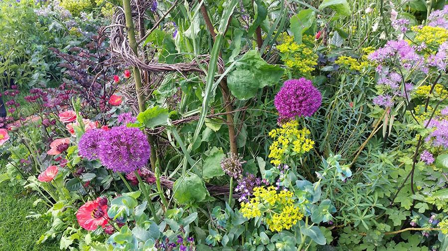Naturliga växtstöd är ett måste i en trädgård, Sarah har använd sig av hassel, pil, kastanj och silverbjörk. Foto: Kerstin Engstrand