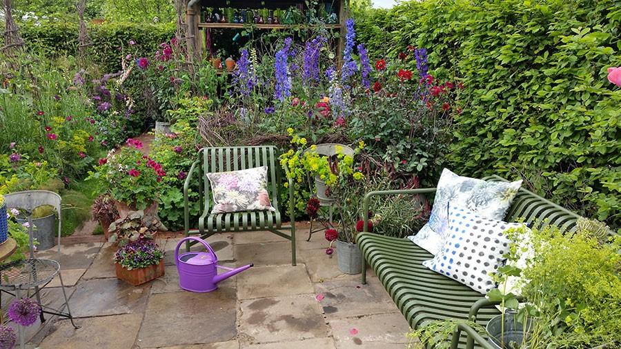 Mellan uteplatsen och trädgårdsskjulet växer  Tricia Guilds favoritkombination, mörkt blå riddarsporrar  med en underplantering av daggkåpa. Foto: Kerstin Engstrand