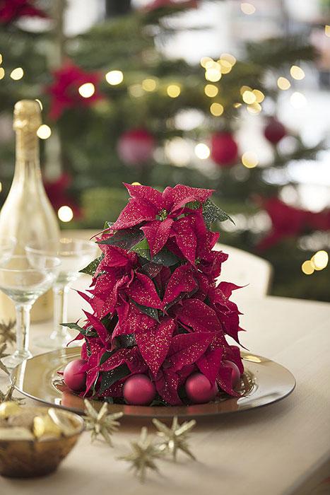 Den här glittrande julstjärnepyramiden är tillverkad av snittade julstjärnor samt minijulstjärnor. Placera blötlagd stickmassa på en bricka och placera en minijulstjärna i kruka på toppen. Fyll sedan pyramiden med snittade julstjärnesticklingar. Se till att krukan och stickmassan döljs ordentligt! Placera avslutningsvis några kulor på brickan.Foto:   Blomsterfrämjandet/Stars for Europe