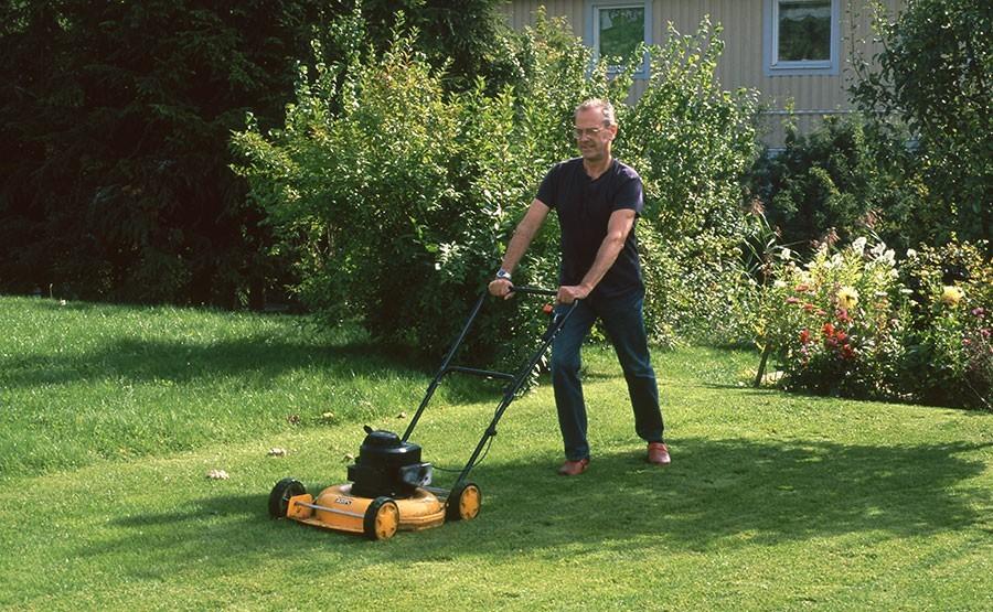 Klipp inte gräset när gräsmattan är torr! Foto: Kerstin Engstrand