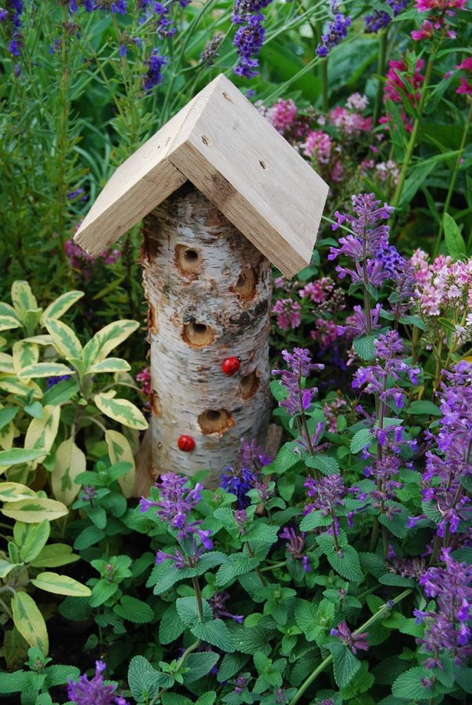 Man kan enkelt bygga hus till nyckelpigor! Foto: Kerstin Engstrand