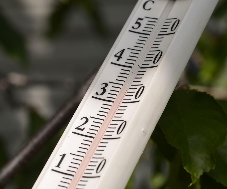 Det är varmt, eller ska man säga hett? Foto: Kerstin Engstrand