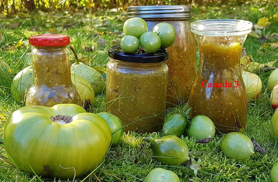 Canada 3, recept på grön tomatröra. Foto: Kerstin Engstrand