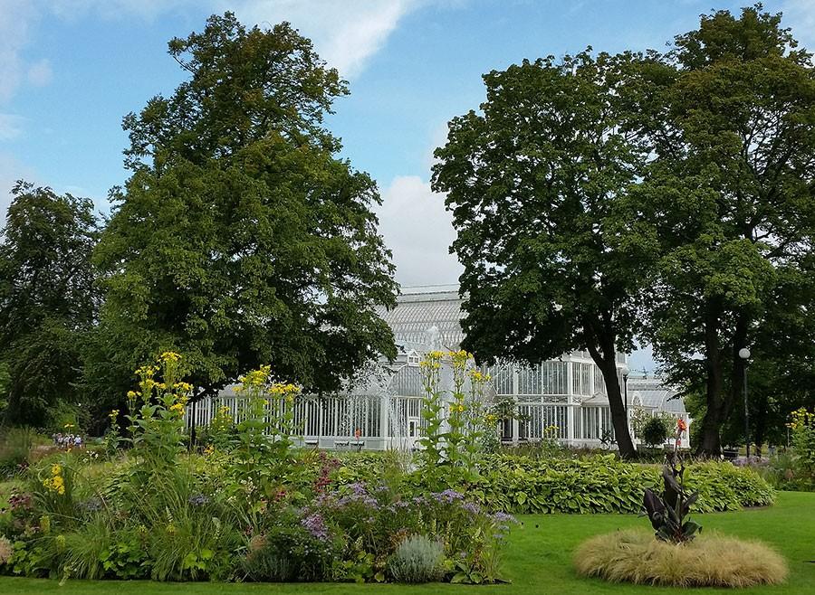 Sval och ändå varm, det eleganta växthuset som ligger mitt i Göteborgs hjärta, inne på Trädgårdsföreningens område, utstrålar självklarhet. Foto: Kerstin Engstrand