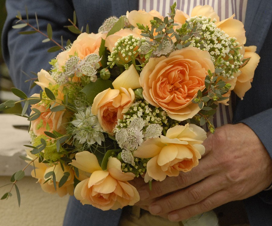 En bukett med rosor av sorten Dame Judi Dench. Foto: Kerstin Engstrand