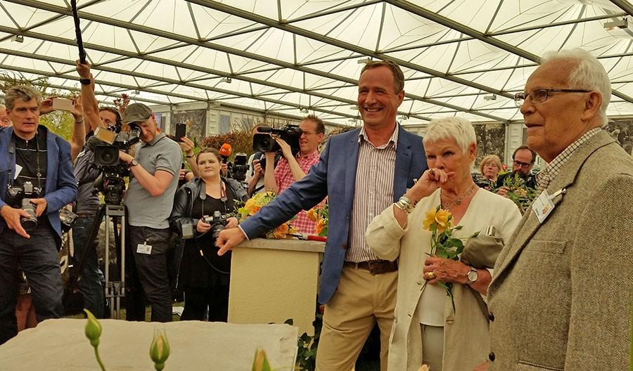 En rörd Judi Dench möter pressen efter att fått en ros uppkallad efter sig. Till vänster om henne står David J C Austin och till höger i egen hög person David Austin.  Foto: Kerstin Engstrand