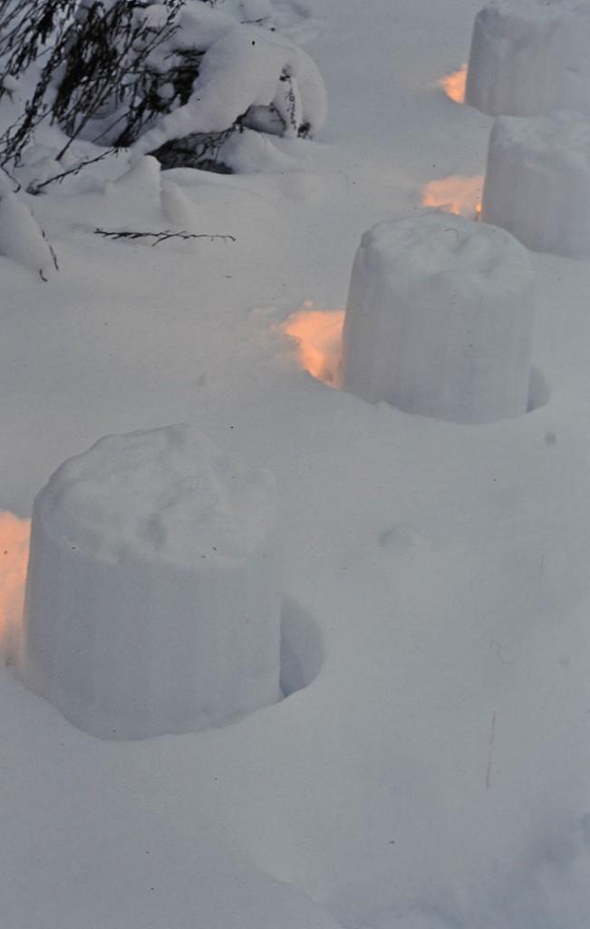 Snölyktorna bakifrån. Foto: Kerstin Engstrand