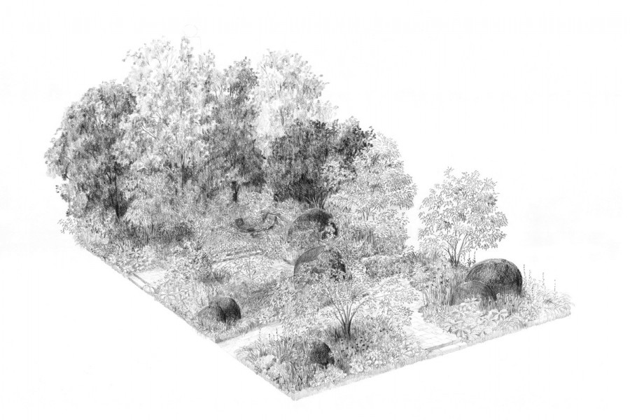 Toms design av trädgården.