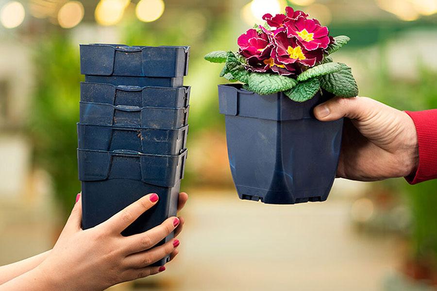 Plantagens blåa krukor som de säljer över 400 olika sorters perenner i ingår egentligen i ett retursystem, för fem krukor får man välja en ny perenn men jag sparar på dessa krukor, de är suveränt bra.  Foto: Plantagen