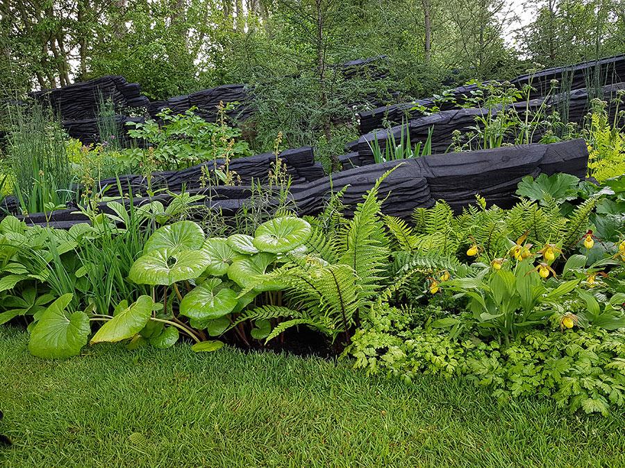 Lägg märke till orkidéerna till höger i bild! Foto: Kerstin Engstrand
