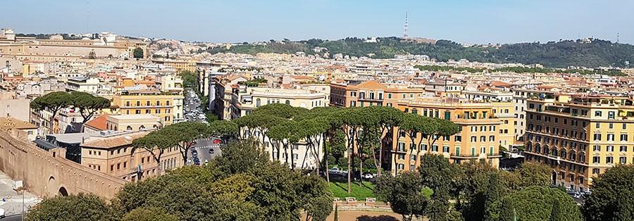 Parasollformade pinjeträd och cypresser, utsikt från Castel  San Angelo mot Vatikanen och Piazza Adriana. i Rom.  Foto: Kerstin Engstrand