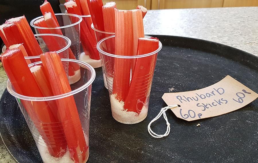 Glasrabarber och lite socker, en självklar ingrediens när det är rabarberfestival. Foto: Kerstin Engstrand