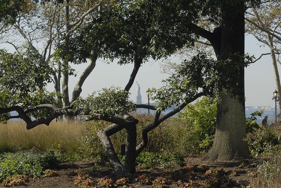 Utsikt mot Frihetsgudinnan från Battery Park. Foto: Kerstin Engstrand